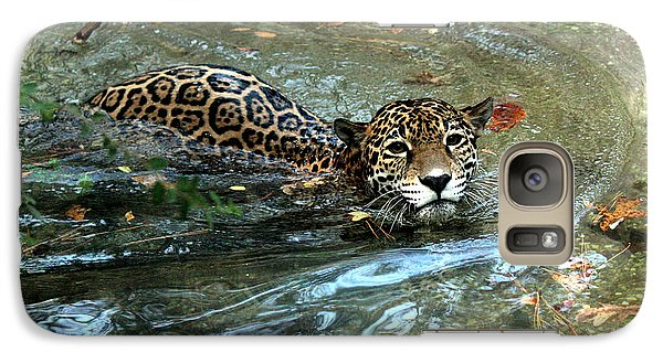 Galaxy Case featuring the photograph Jaguar In For A Swim by Kathy  White
