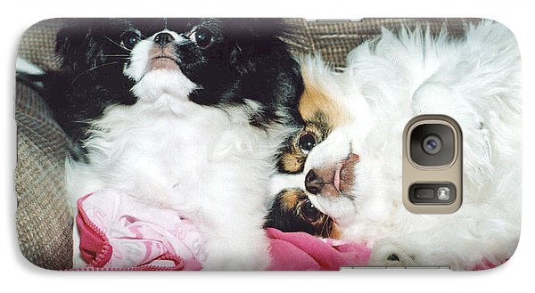 Galaxy Case featuring the photograph Japanese Chin Dogs Begging For Treats by Jim Fitzpatrick