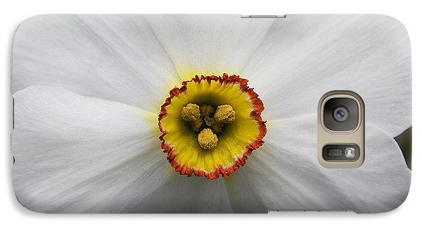 Galaxy Case featuring the photograph Jonquil by Michael Friedman