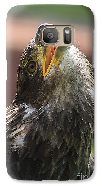 Galaxy Case featuring the photograph Juvenile Bald Eagle by Alyce Taylor