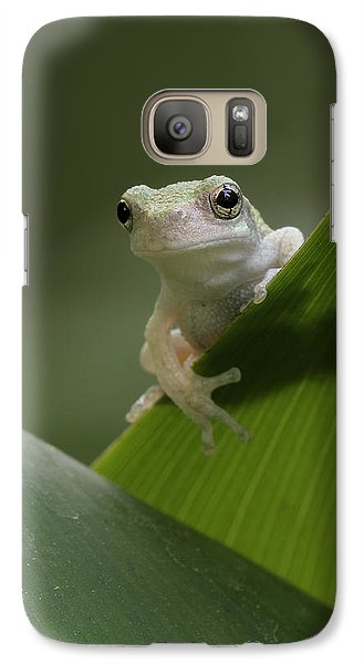 Galaxy Case featuring the photograph Juvenile Grey Treefrog by Daniel Reed
