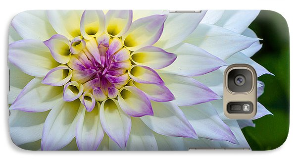 Galaxy Case featuring the photograph Lady Dahlia by Ken Stanback
