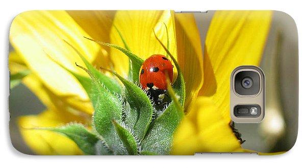 Galaxy Case featuring the photograph Ladybug by Mitch Shindelbower