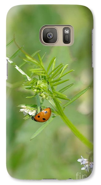 Galaxy Case featuring the photograph Ladybug by Tannis  Baldwin