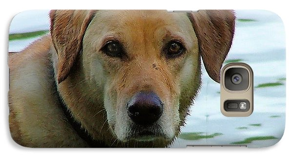 Galaxy Case featuring the photograph Lake Dog by Wendy McKennon