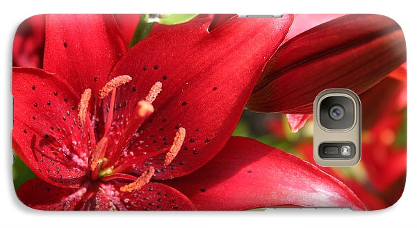 Galaxy Case featuring the photograph Lilies In Red by Laurel Talabere