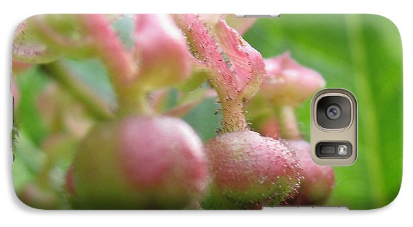 Galaxy Case featuring the photograph Lilly Of The Valley Close Up by Kym Backland