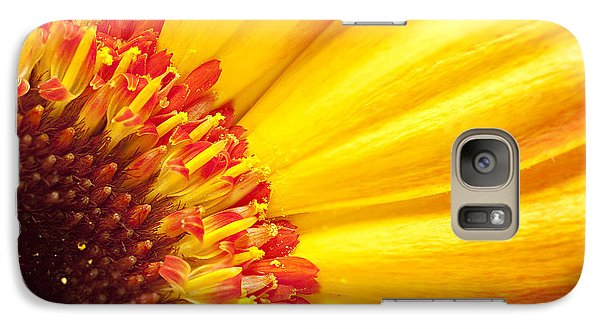 Galaxy Case featuring the photograph Little Bit Of Sunshine by Eunice Gibb