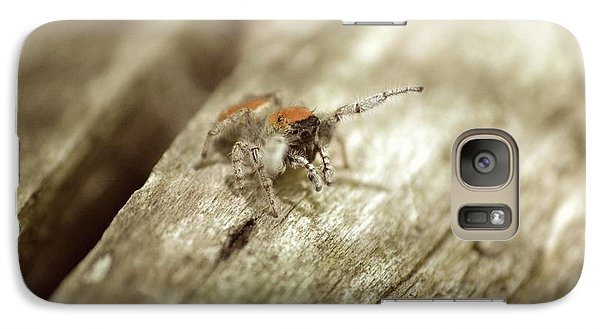 Galaxy Case featuring the photograph Little Jumper In Sepia by JD Grimes