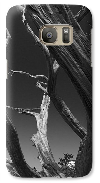 Galaxy Case featuring the photograph Lone Tree by David Gleeson