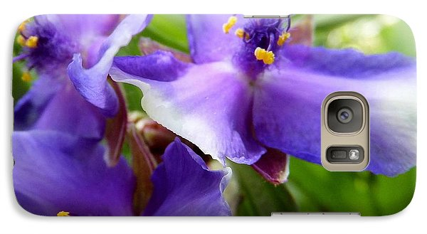 Galaxy Case featuring the photograph Lots Of Purple by Carolyn Repka