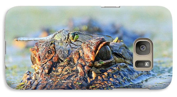 Galaxy Case featuring the photograph Louisiana Alligator With Dragon Fly by Luana K Perez