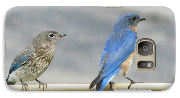 Galaxy Case featuring the photograph Male And Female Bluebirds On A Perch by Betty Pieper