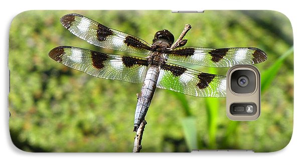 Galaxy Case featuring the photograph Male Twelve-spotted Dragonfly by Maciek Froncisz