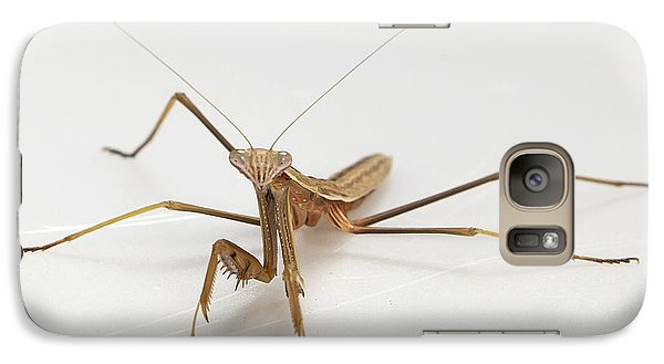 Galaxy Case featuring the photograph Mantis 1 by John Crothers