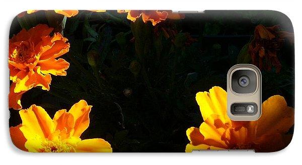 Galaxy Case featuring the photograph Marigold Sunrise by Jim Sauchyn