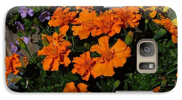 Galaxy Case featuring the photograph Marigolds by Jim Sauchyn