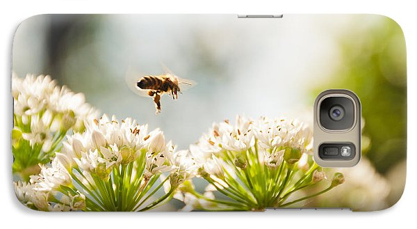 Galaxy Case featuring the photograph Mid-pollenation by Cheryl Baxter