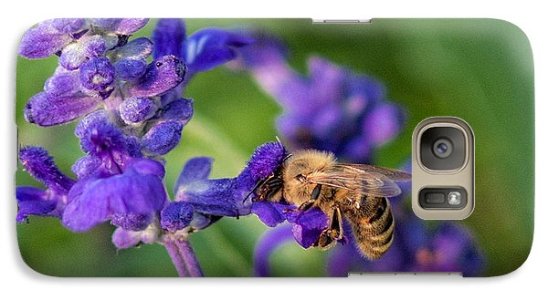 Galaxy Case featuring the photograph Mmmm Honey by Tom Gort