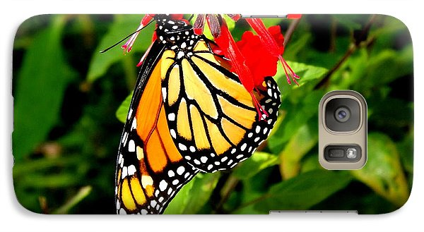Galaxy Case featuring the photograph Monarch Butterfly On Red Flowers by Jodi Terracina