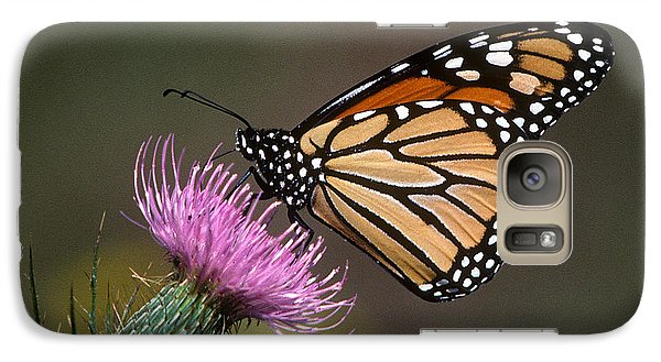 Galaxy Case featuring the photograph Monarch Butterfly On Thistle 13a by Gerry Gantt