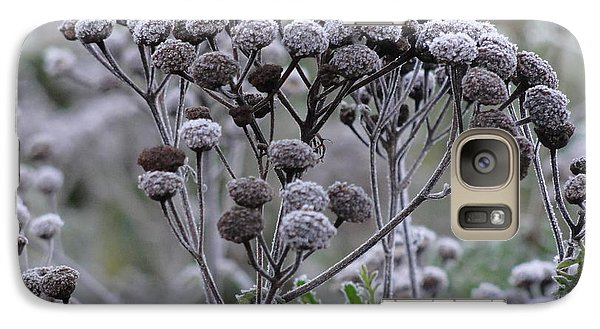 Galaxy Case featuring the photograph Morning Frost by Tiffany Erdman