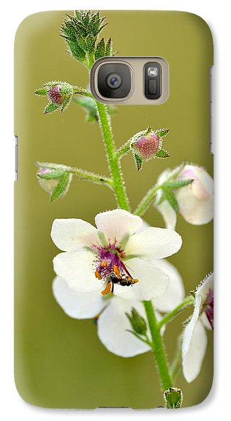 Galaxy Case featuring the photograph Moth Mullein by JD Grimes