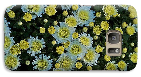 Galaxy Case featuring the photograph Mums by Joseph Yarbrough