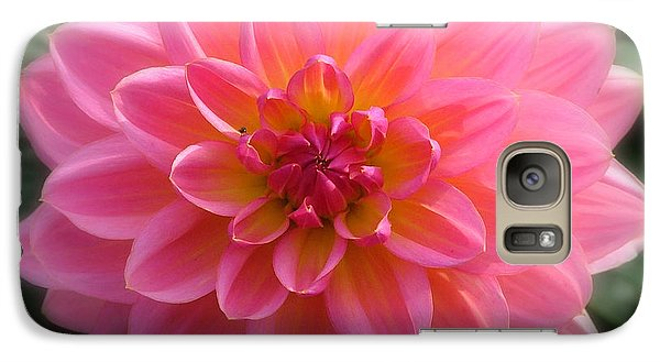 Galaxy Case featuring the photograph Mum's The Word by Wendy McKennon