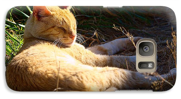 Galaxy Case featuring the photograph Napping Orange Cat by Chriss Pagani