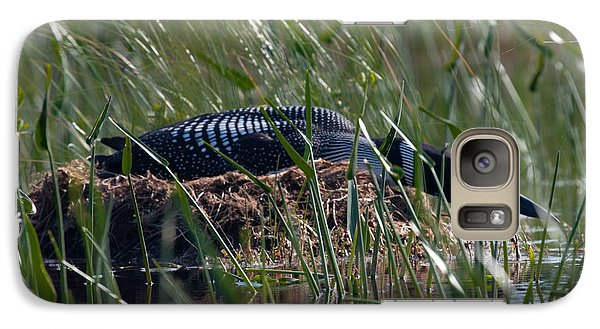Galaxy Case featuring the photograph Nesting Loon by Brent L Ander