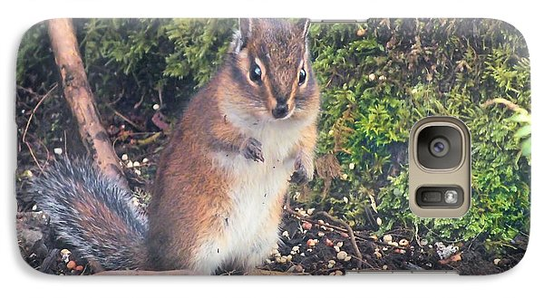 Galaxy Case featuring the photograph Newport Squirrel by Wendy McKennon