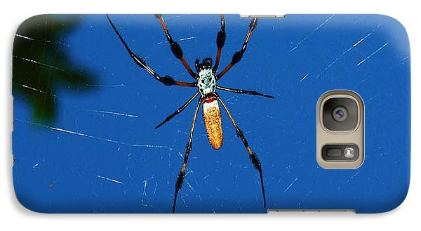 Galaxy Case featuring the photograph Not-so Itsy-bitsy Spider by Joy Braverman