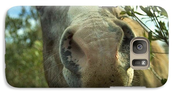 Galaxy Case featuring the photograph Old Gray Mare by Patricia Greer