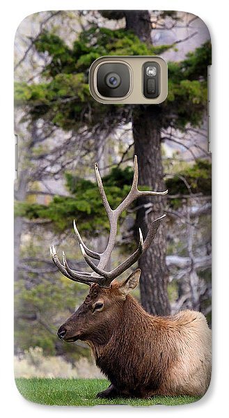 Galaxy Case featuring the photograph On The Grass by Steve McKinzie