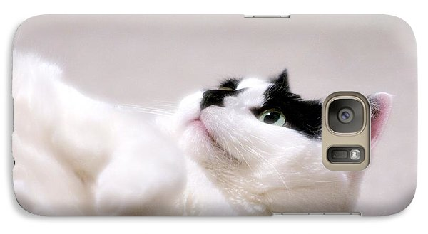 Galaxy Case featuring the photograph One Belly Rub Please by JM Photography