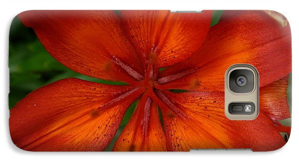 Galaxy Case featuring the painting Orange Beauty by Dolores  Deal