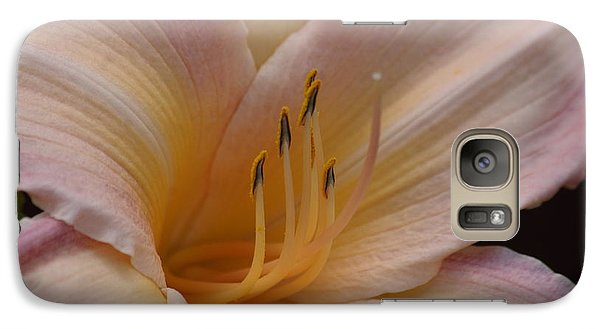 Galaxy Case featuring the photograph Orange Daylily  by Tannis  Baldwin