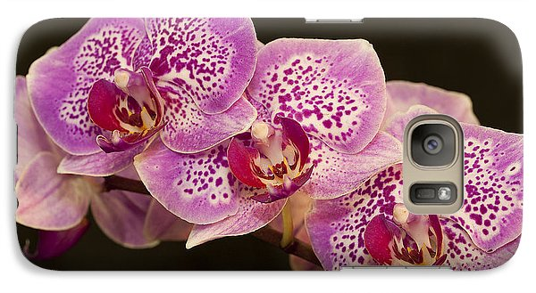 Galaxy Case featuring the photograph Orchids by Eunice Gibb