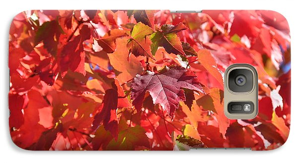 Galaxy Case featuring the photograph Oregon Red by Mindy Bench