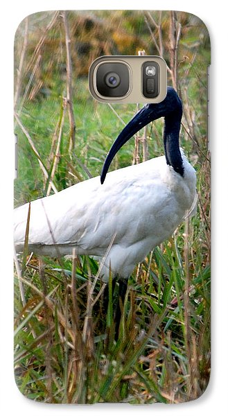 Galaxy Case featuring the photograph Oriental White Ibis by Pravine Chester