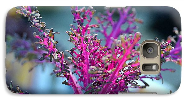 Galaxy Case featuring the photograph Ornamental Cabbage by Judi Bagwell