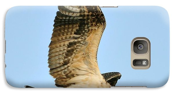 Galaxy Case featuring the photograph Osprey After Flight by Rick Frost