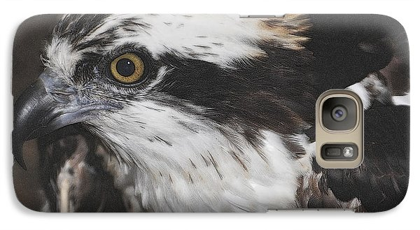 Galaxy Case featuring the photograph Osprey by Lydia Holly