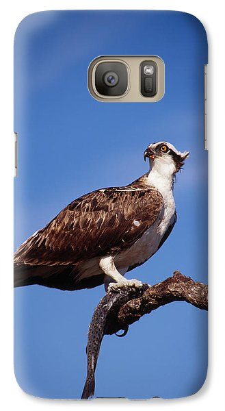 Galaxy Case featuring the photograph Osprey With Fish by Bradford Martin