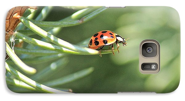 Galaxy Case featuring the photograph Out On A Limb by Penny Meyers
