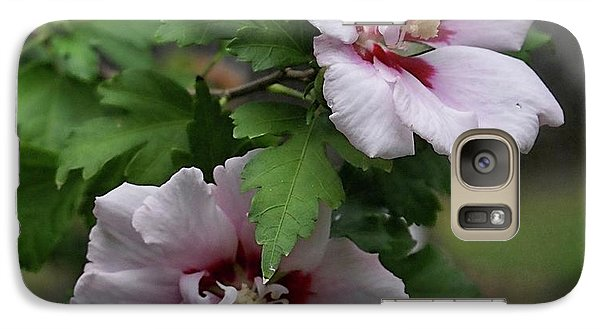 Galaxy Case featuring the photograph Pair Of Rose Of Sharon by Rick Friedle