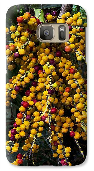 Galaxy Case featuring the photograph Palm Seeds Baroque by Steven Sparks