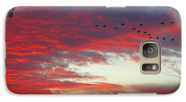 Galaxy Case featuring the photograph Papaya Colored Sunset With Geese by Kym Backland