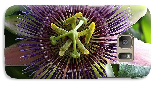 Galaxy Case featuring the photograph Passion Flower 2 by Bruce Bley